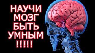 10 бесплатных способов стать умнее почти как Эйнштейн  - Задействуй свой мозг на 100 %