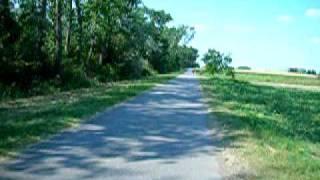 preview picture of video 'Mit dem Radl am Neusiedler See von Podersdorf in Richtung Neusiedl'