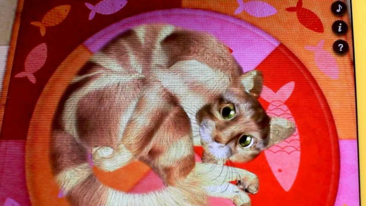 An iPad App Where You Poke A Virtual Cat To Make It Mad