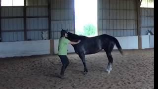 Maia and I -- Dancing at Liberty