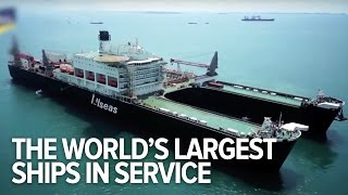 All The World's Largest Ships In Service