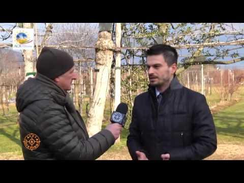 Intervista del 22 gennaio 2016