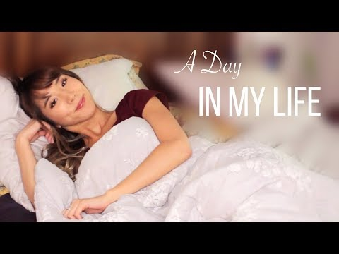 A Day In My Life · TRY GUYS, PETS, DAILY ROUTINE | YB Chang