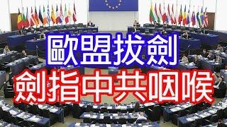 反送中歐盟忍無可忍強硬表態💪因歐盟睇穿中共底牌🤪香港人上街是用腳公投👣🚸👨👨👦👦2019_7_19