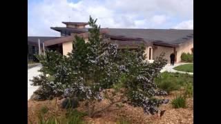 Guerrilla Gardening Club Short Film