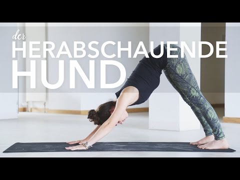 Yoga Herabschauender Hund für Anfänger | Adho Mukha Svanasana | Asana lernen
