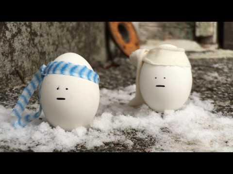 YSAC Egg Saga