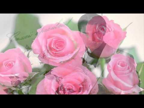 Я тебя поздравляю счастья желаю мира желаю текст песни