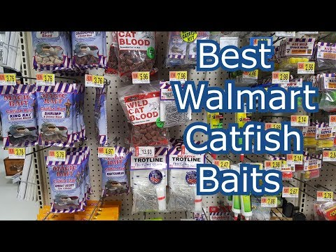 Best 5 Walmart Catfish Baits