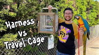 Parrot Harness vs Travel Cage - What's Better?