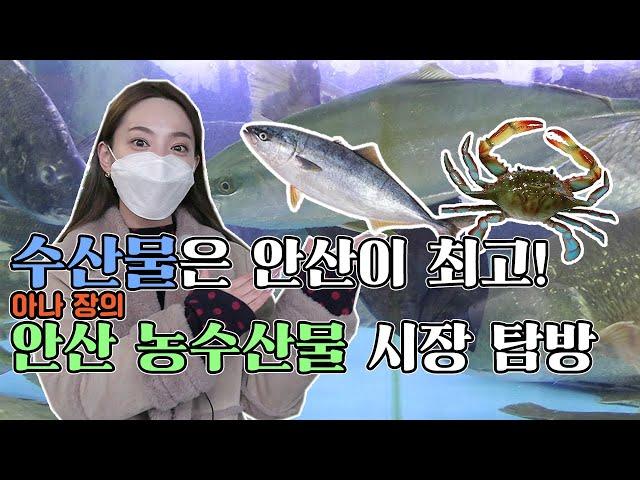 [영상]수산물은 안산이 최고! 아나장의 안산 농수산물 시장 탐방