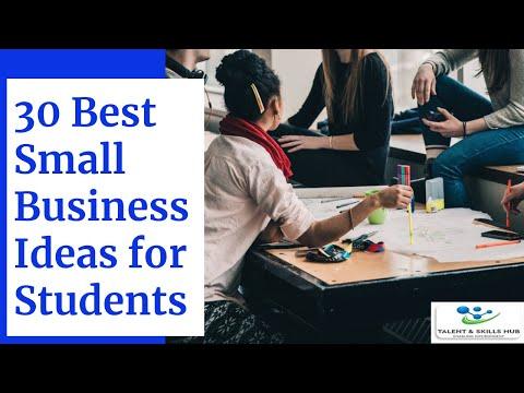 , title : '30 Best Small Business Ideas for Students | Talent & Skills HuB