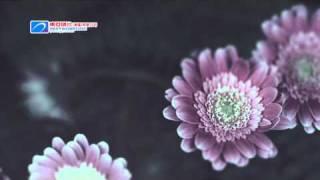 王菀之 Ivana Wong《最好的》官方 MV