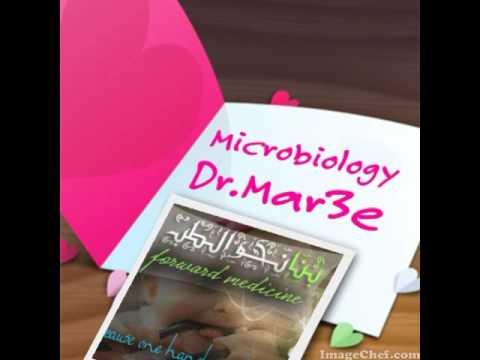 Indicații de masaj de prostată pentru utilizare