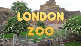 London 28 - ZSL London Zoo