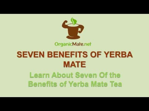 Video Yerba Mate Benefits - See How This Stimulant Tea Improves Your Well-being