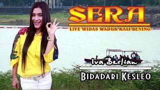 Gambar cover Bidadari keseleo SERA live Widas
