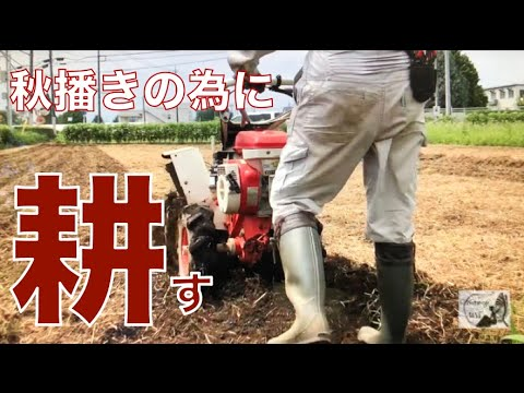 , title : '【自然栽培】無農薬・無化学肥料栽培で一番大事なのは土作りです🌿秋・冬野菜の準備開始🥬The most important thing is soil making 【家庭菜園にも使える】