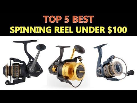 Best Spinning Reel Under $100 – 2018