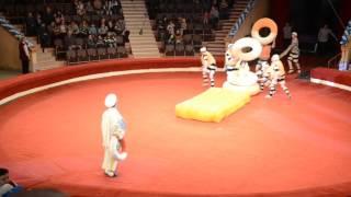 приколы над зрителем в гомельском цирке