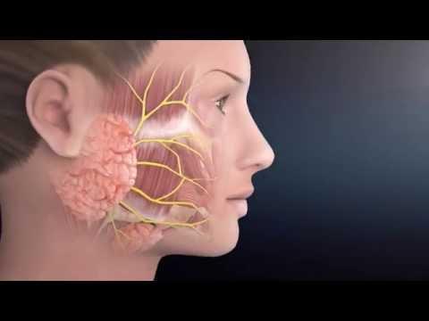 Prosztatagyulladás kezelése és fizioterápia
