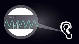 Fourier Series: Modeling Nature