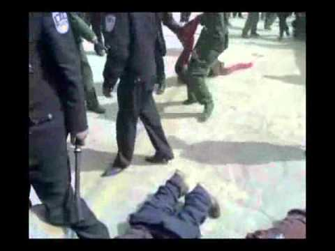 mongol tsagdaa iim l baix yostoi - Assassin Bb - Video - Free Music