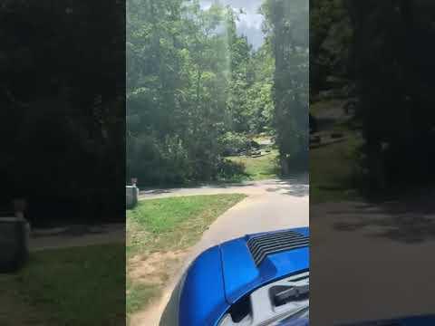 Video Of Cumberland Mountain, TN