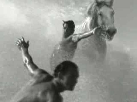 Guinness - The Surfer White Horses