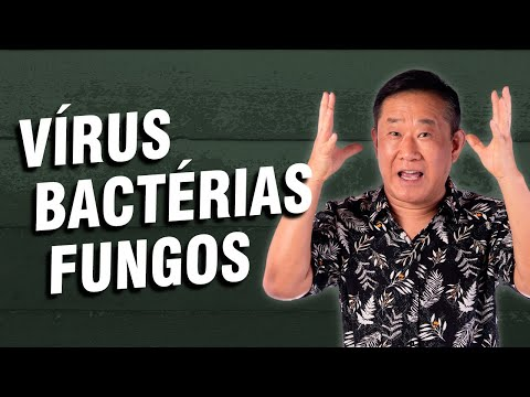 Como é possível tratar um fungo na cabeça