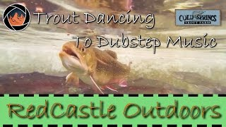 Trout Dancing to Dubstep Music