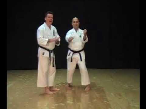 Isshin-Ryu Sanchin Kata & Bunkai by Michael Calandra 8th Dan