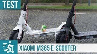 Xiaomi M365 E-Scooter im Test: Perfekt für die letzte Meile?
