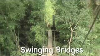 preview picture of video 'Waihe'e Valley Trail / Swinging Bridges Virtual Maui Guide'