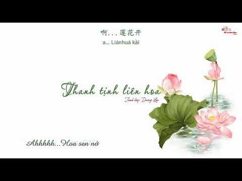 [Vietsub] Thanh tịnh liên hoa - Dương Lạc [清净莲花 - 杨乐]