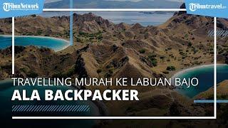Tips Travelling Murah ke Labuan Bajo ala Backpacker