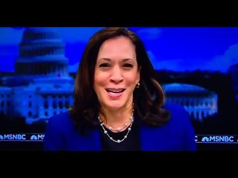 Wall Street Ecstatic With Kamala Harris VP Pick