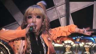 2NE1 - 'I Don't Care Reggae Ver.' Live Performance [New Evolution]
