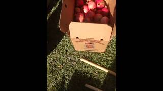 Congratulations to Fred Wolinsky for winning our #pomegranate picking contest. He has donated his wi