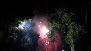 preview picture of video 'Feu d'artifice en pleine rue à nanchang 3/3'