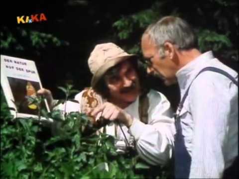 Malyschewa über die Würmer Videos