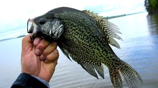 SLIP BOBBER CRAPPIE…AWESOME