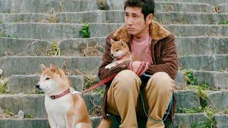 mqdefault - 犬連れの平和なおっさんが脅され、公園が閉鎖!?映画『柴公園』予告編