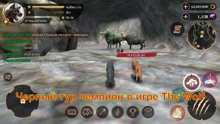 Черный тур чемпион в игре The Wolf 🐺 игра game можно смотреть мультфильмы онлайн мультики для детей