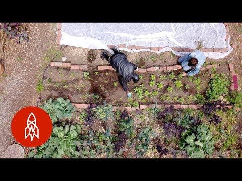 Teaching the Homeless How to Farm