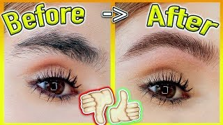 How to GROW Your EYEBROWS *FAST!* (Thick & Natural Results)