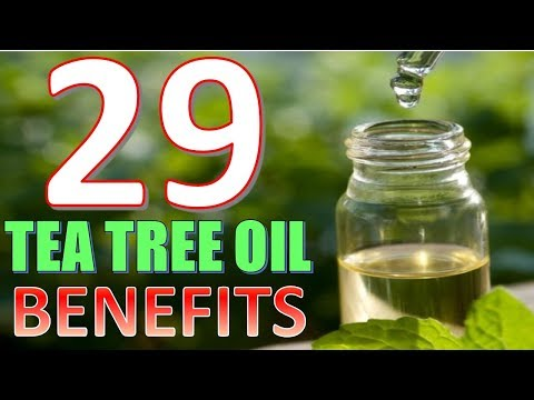 29 Life hacks, Uses and Benefits of Tea tree Oil YOU NEED TO KNOW!