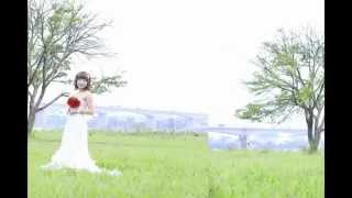 preview picture of video 'dam cuoi phu khe'