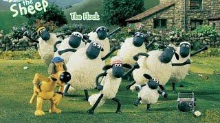 Những Chú Cừu Tinh Nghịch - Shaun The Sheep