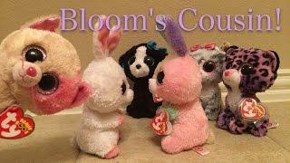Beanie Boo's: Bloom's Cousin!